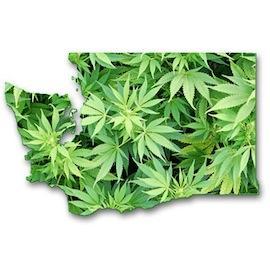 WashingtonMarijuana.jpeg