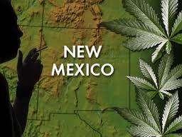 new-mexico-medical-marijuana.jpeg