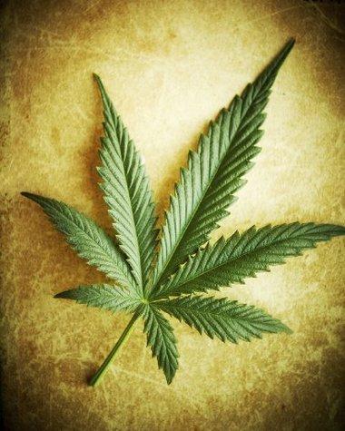 pros-med-marijuana-ruse-thcfinder.jpeg