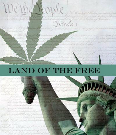 10th-amendment-marijuana-rights.jpg