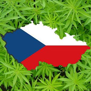 czechmedicalmarijuana.jpeg