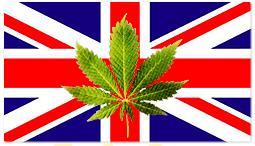 marijuana-england-uk.png