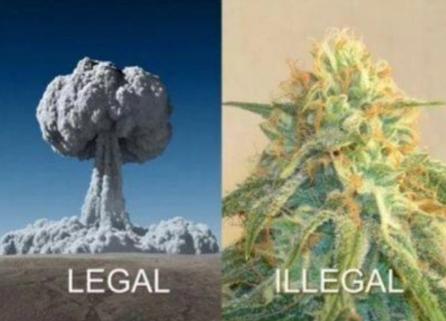 LegalBombIllegalMarijuana.jpg