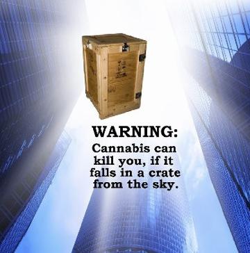 WarningCannabisCanKillYou.jpg