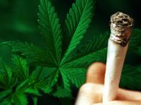 100802-michigan_legalizes_medical_marijuana flip.jpg