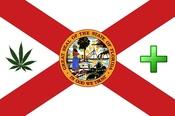 TOKEOFTHETOWN FLORIDA FLAG feb 2013.jpg