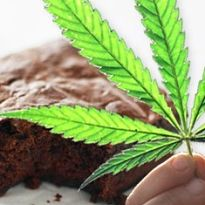 marijuana brownie 205x205.jpg