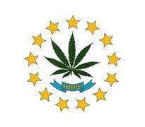 Rhode_Island_state_flag tokeofthetown2013.jpg