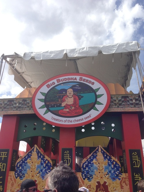 Thumbnail image for dencancup2013 buddha seeds1.JPG