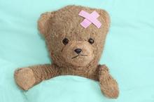 sick bear flickr.jpg