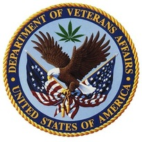 Thumbnail image for toke2013 veterans affairs.jpg