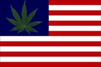 tokeofthetown2013 USA flag.jpg