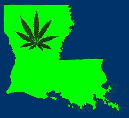 Image result for louisiana marijuana