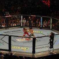 UFC-fight.jpg