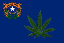 Thumbnail image for resized nevada flag.jpg