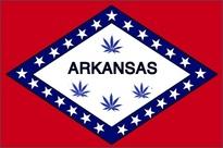 arkansas-flag-TokeoftheTown2013.jpg
