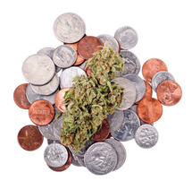 Thumbnail image for marijuana-money.jpg
