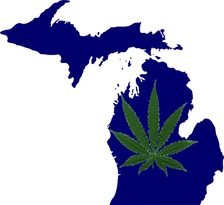 michigan-weedleaf.jpg