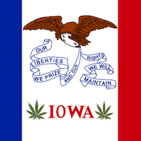 Iowa_state_flag.png