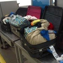 TSA-potluggage.jpg