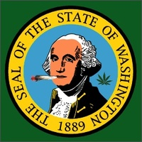 Thumbnail image for Thumbnail image for washington flag toke 2013.jpg