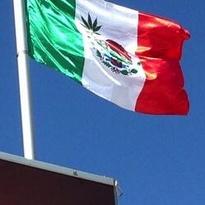 maclaren-mexicoflag-twitter_gabo_rojas_n.jpg