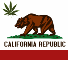 Thumbnail image for calisquare-californiaflag.png
