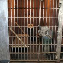 jail.flikr.mrthomas.jpg