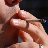 marijuana.joint.close.up.205x205.jpg