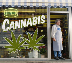 Thumbnail image for recreational-marijuana-in-colorado.9434820.87.jpg