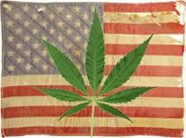 American.pot.flag.jpg
