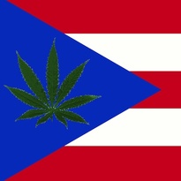 Thumbnail image for puerto rico flag weed tokeofthetown2013.jpg