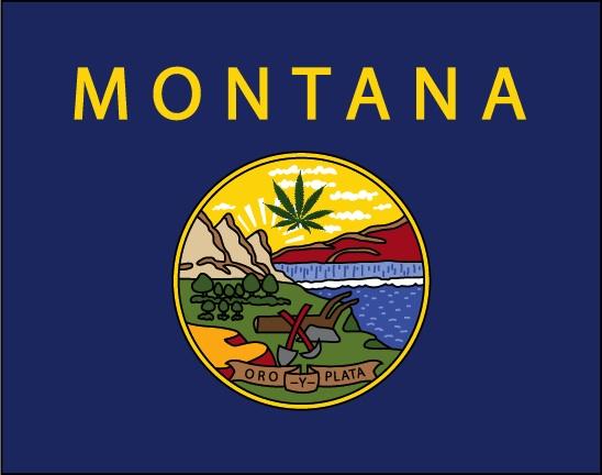 Montana-flag-large.jpg