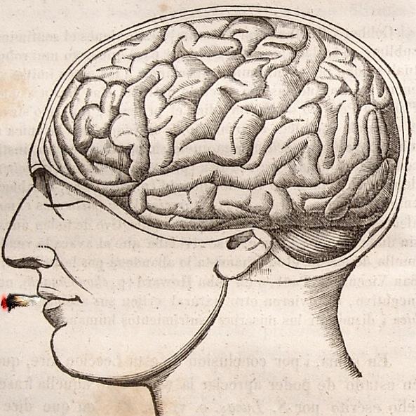 antique-brain.jpg