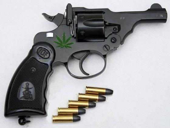 Thumbnail image for Toke-Gun-Anupam-Kamal.jpg