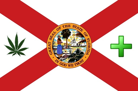 Thumbnail image for TOKEOFTHETOWN FLORIDA FLAG feb 2013.jpg