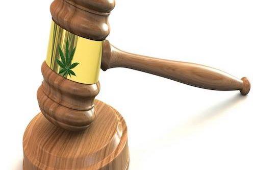 gavel-weed.jpg