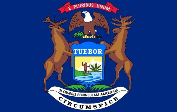 MichiganFlag-Toke2014.jpg