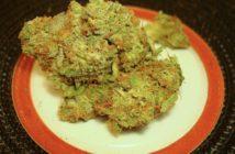 herban-pbandjillyb-thumb-565x429.jpg
