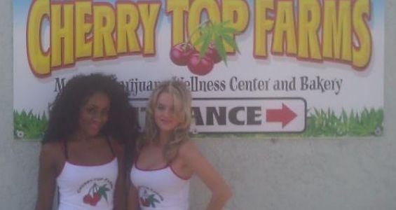 cherry.top.farms.t.shirts.565x300.jpg