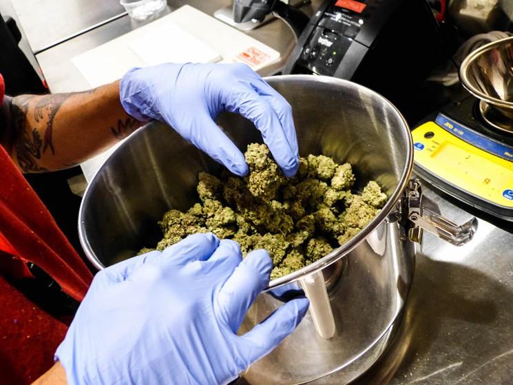 california-democrats-endorse-auma-marijuana