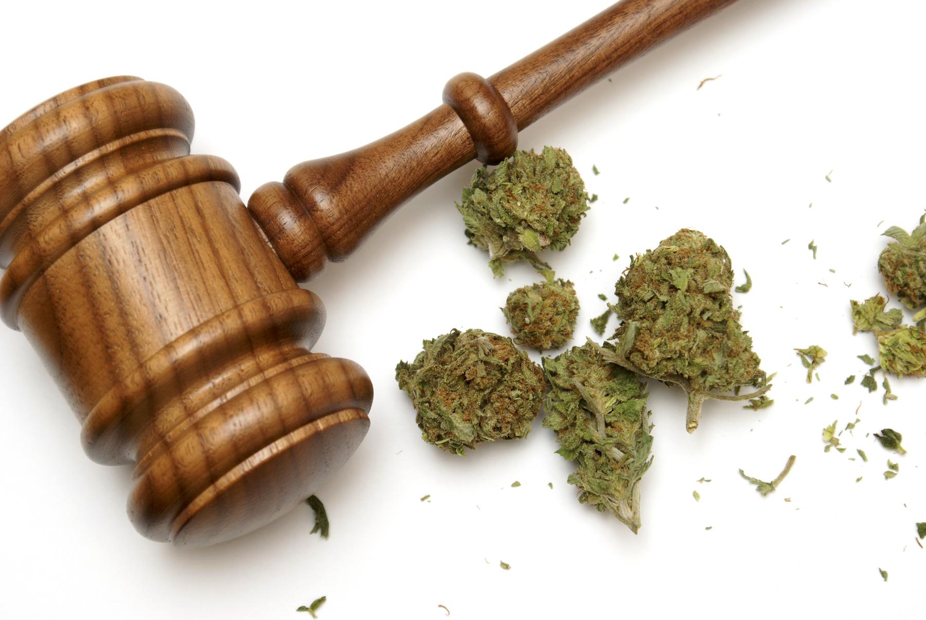 marijuana gavel credit - Shutterstock.com