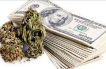 marijuanathink
