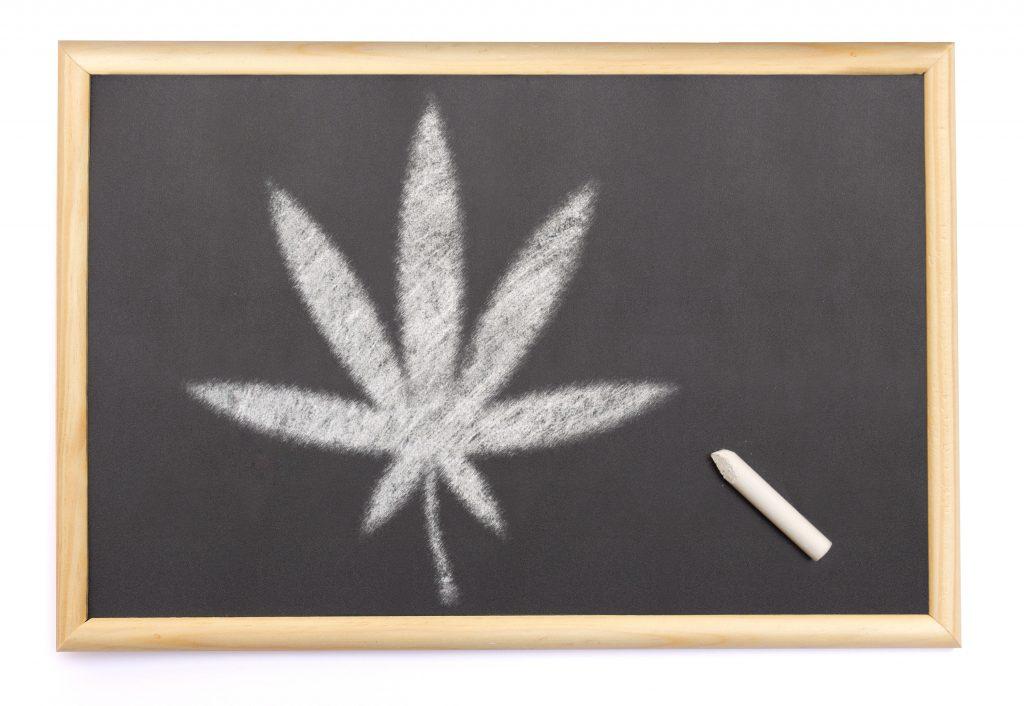 marijuana scholarship