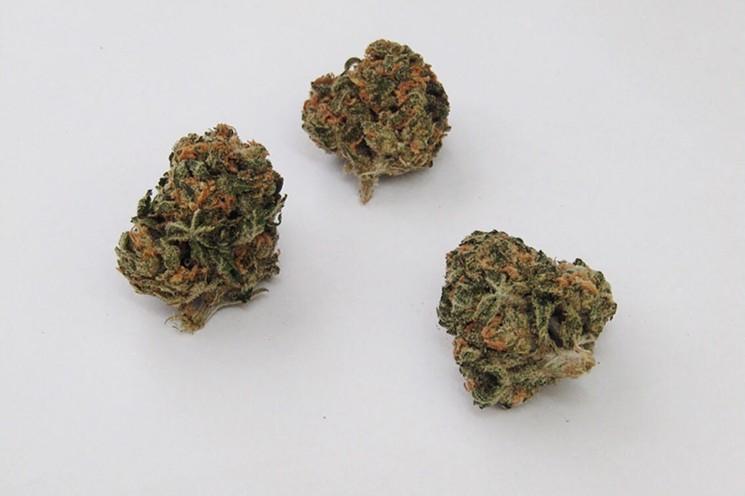 ak47 strain
