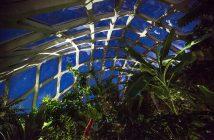 denver-botanic-gardens-danielle-lirette-2016 (1)