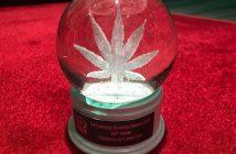 cannabis-business-awards-clover-leaf