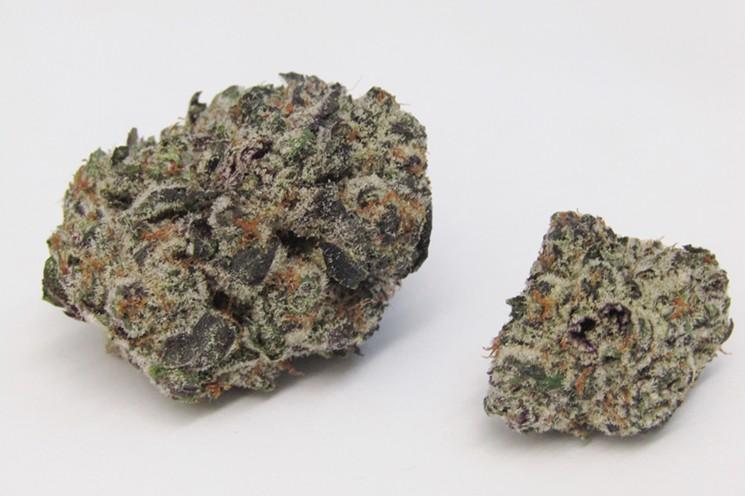 strain_8-15